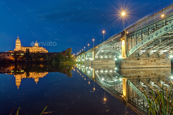 The Cathedral of Salamanca and the river Tormes - Stock Photo - Images