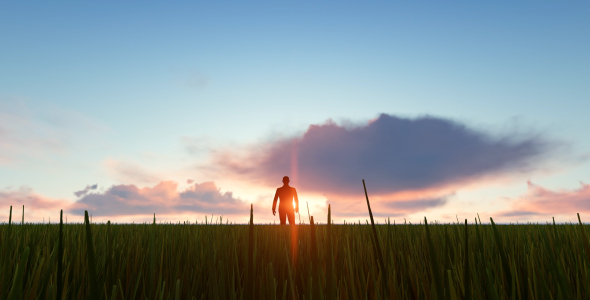 VideoHive Silhouette Man Walking On The Field 21199643