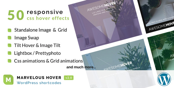 Marvelous Hover Effects | WordPress plugin - CodeCanyon Item for Sale