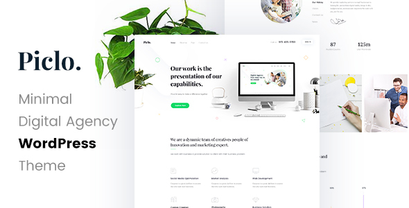 Piclo - SEO /Digital Agency WordPress Theme