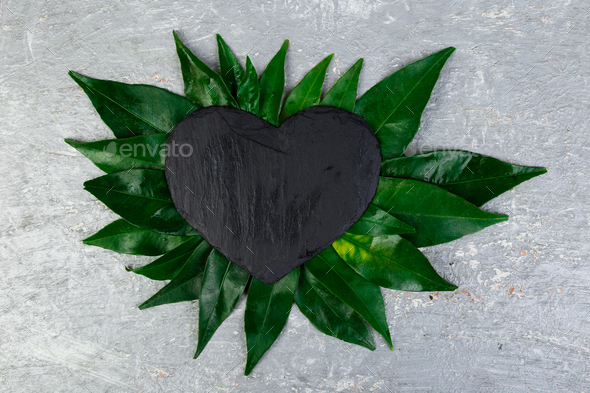 Creative layout made of leaves with black  slate plate card note. - Stock Photo - Images