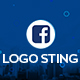 Logo Sting - VideoHive Item for Sale