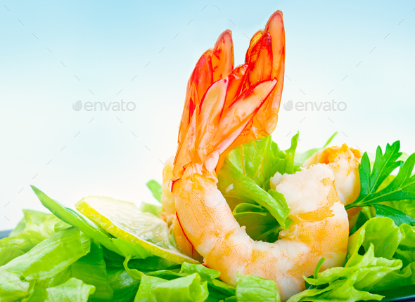 Tasty shrimp salad - Stock Photo - Images