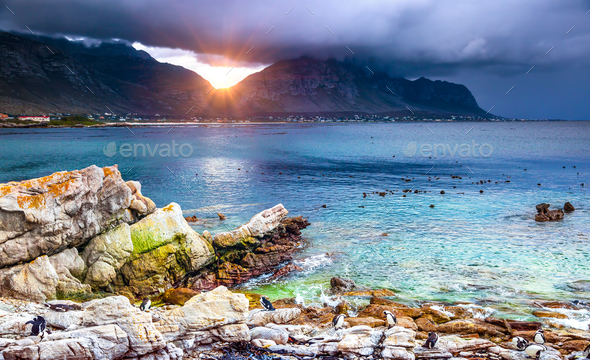 Amazing view of a bay - Stock Photo - Images