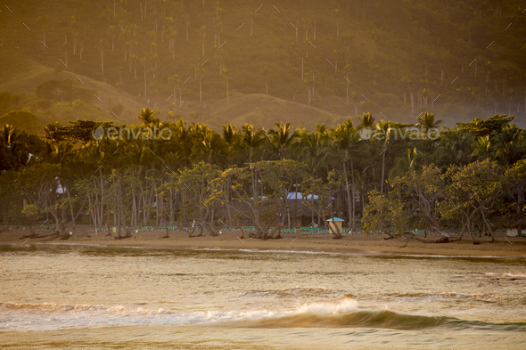 Tropical beach in the Dominican Republic at dawn - Stock Photo - Images