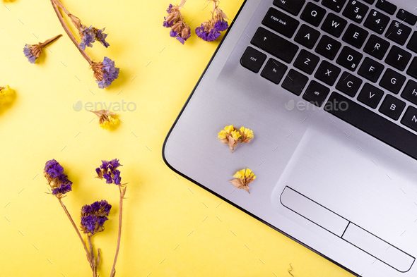 Notebook and flowers for female. - Stock Photo - Images