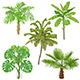 Tropical Plants Isolated - GraphicRiver Item for Sale