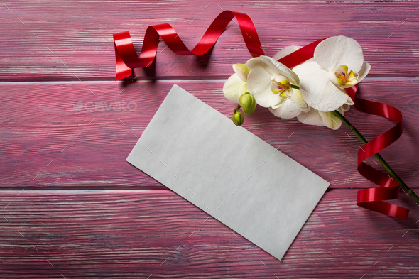 White Orchid and envelope on a pink wooden background - Stock Photo - Images