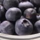 Large Blueberries Spilling Out of a Glass Bowl - VideoHive Item for Sale