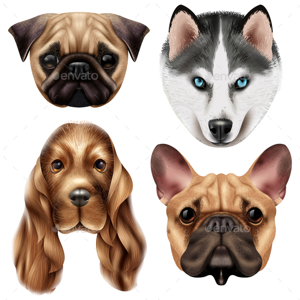 Realistic Dog Breed Icon Set - Animals Characters