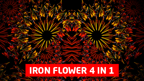 Iron Flower 4 in 1 Vj