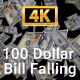 100 Dollar Bill Falling Slowly - VideoHive Item for Sale