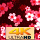 Chinese New Year 4K - VideoHive Item for Sale