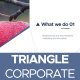 Triangle Corporate - VideoHive Item for Sale