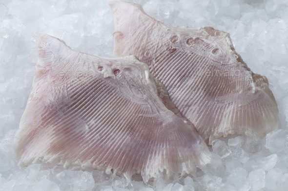 Fresh skate fish wings - Stock Photo - Images