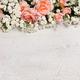 beautiful floral frame - PhotoDune Item for Sale