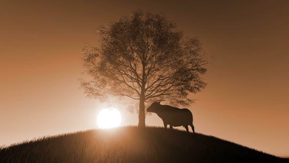 VideoHive Cow Silhouette 21208868