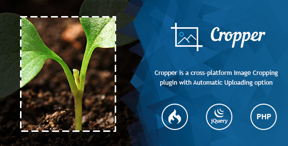 Ultra Image Cropper – Plugin built on CorePHP Best Scripts