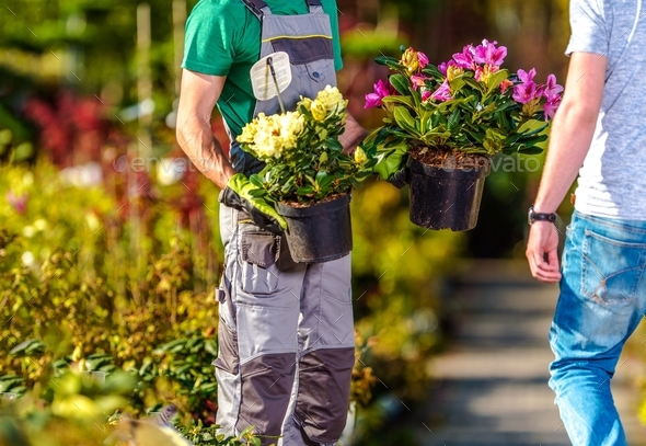 Flowers Sale Industry - Stock Photo - Images