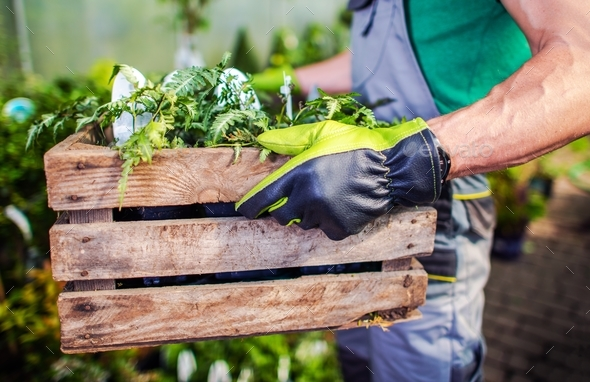 Garden Store Job - Stock Photo - Images