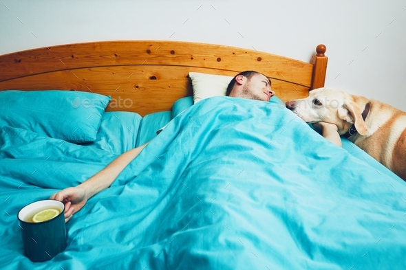 Sick man in the bed - Stock Photo - Images
