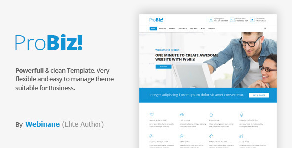 Probiz - An Easy to Use and Multipurpose Business and Corporate WordPress Theme