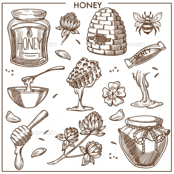 Sweet Honey From Apiary Isolated Cartoon - Food Objects