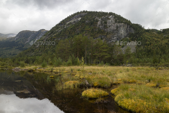 Landscape in the Setesdal - Stock Photo - Images