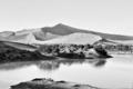 Flooded Sossusvlei in the Namib Desert in Monochrome - PhotoDune Item for Sale