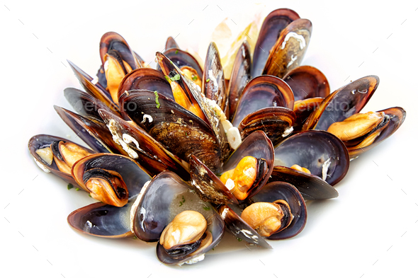 cooked mussels on white background - Stock Photo - Images