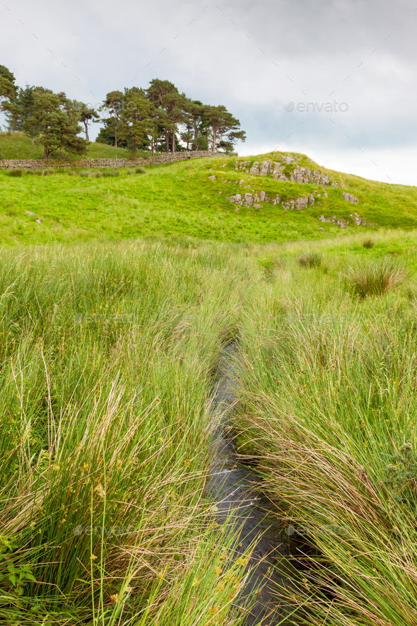 Landscape near Hadrian's Wall - Stock Photo - Images