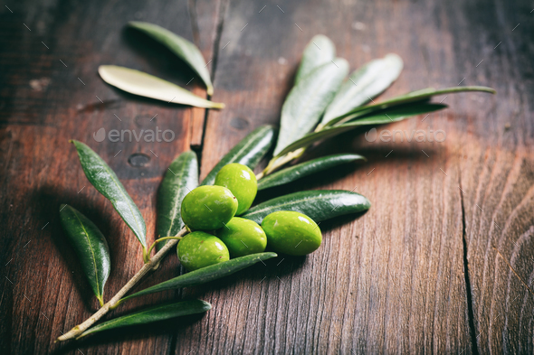 Olive twig on a wooden table - Stock Photo - Images