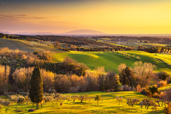 Maremma countryside, sunrise landscape. Elba island on horizon. - Stock Photo - Images