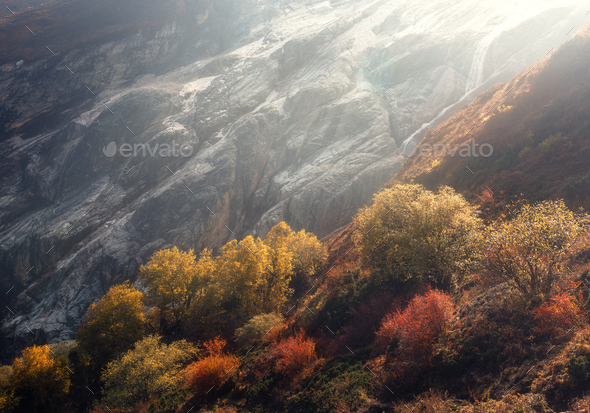 Beautiful trees on the hillside against mountains - Stock Photo - Images
