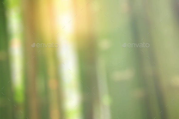Bamboo with blurred images - Stock Photo - Images