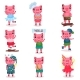 Pig Characters Set