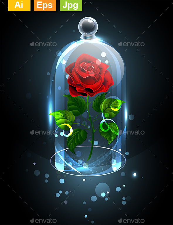 Red Rose Under Crystal Dome - Flowers & Plants Nature