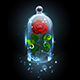 Red Rose Under Crystal Dome