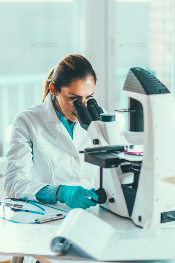 Scientist researching in laboratory - Stock Photo - Images