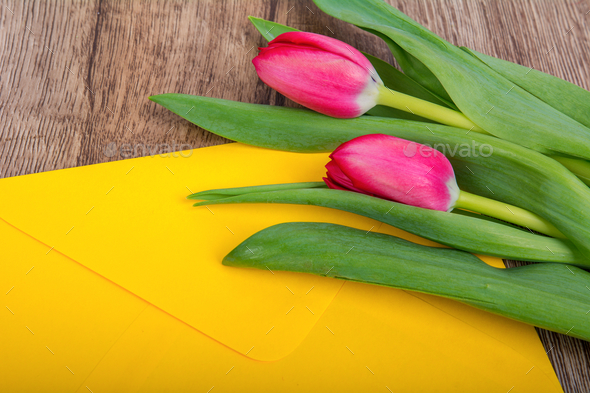 Envelope and tulip on a wooden table - Stock Photo - Images