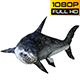 Shark 6 Realistic Pack 3 - VideoHive Item for Sale