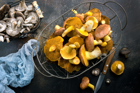 raw mushrooms - Stock Photo - Images