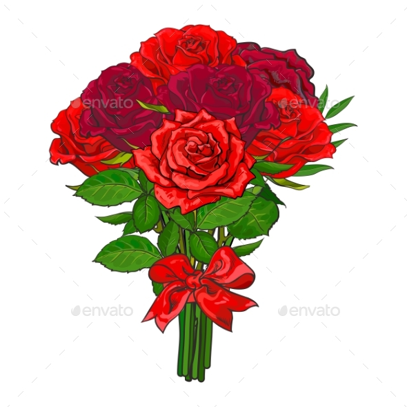 Bunch of Red Rose Flowers Tied with Scarlet Ribbon - Flowers & Plants Nature