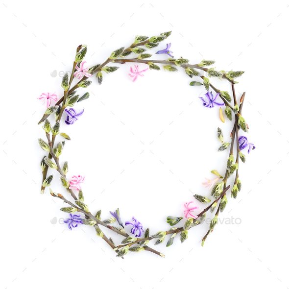 Pussy-willow branches with flowers hyacinth circle frame. Decora - Stock Photo - Images
