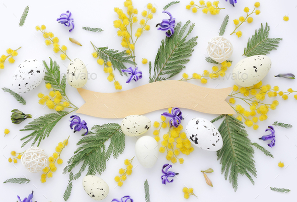 Easter eggs and mimosa and hyacinth flowers on white background. - Stock Photo - Images