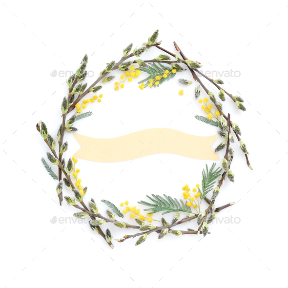 Pussy-willow branches with mimosa circle frame. Decorative wreat - Stock Photo - Images