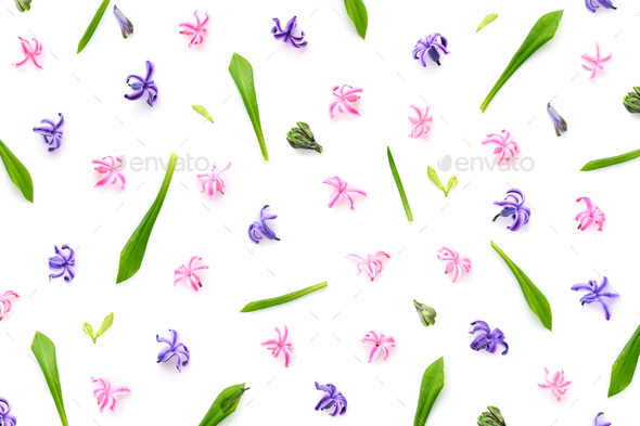 Floral pattern made of hyacinths flowers, green leaves, bud on w - Stock Photo - Images