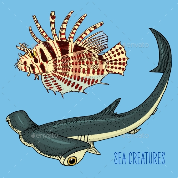 Sea Creature Red Lionfish and Great Hammerhead