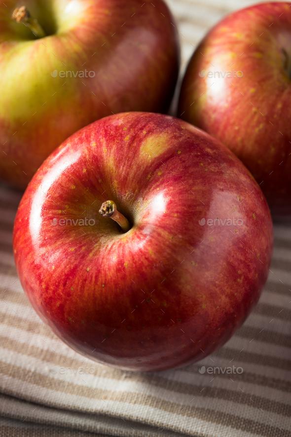 Raw Red Organic Kiku Apples - Stock Photo - Images
