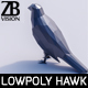 Lowpoly Hawk 001 - 3DOcean Item for Sale